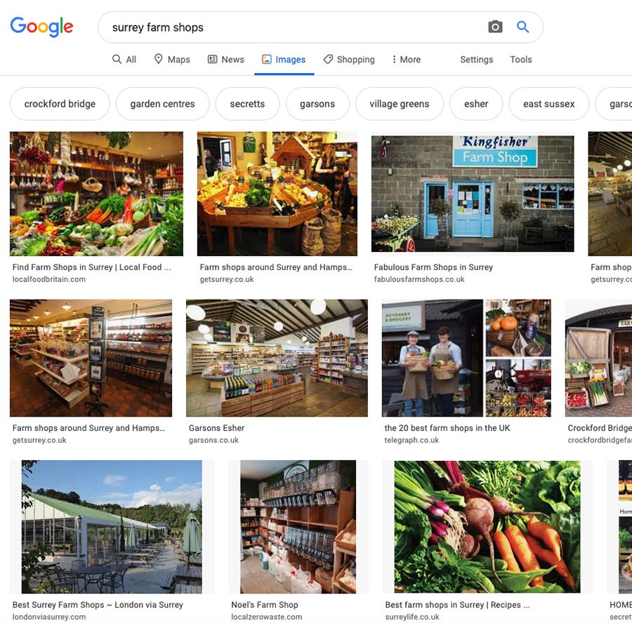 Google search on Surrey