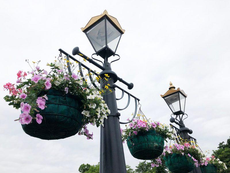 Kingston bridge flowers